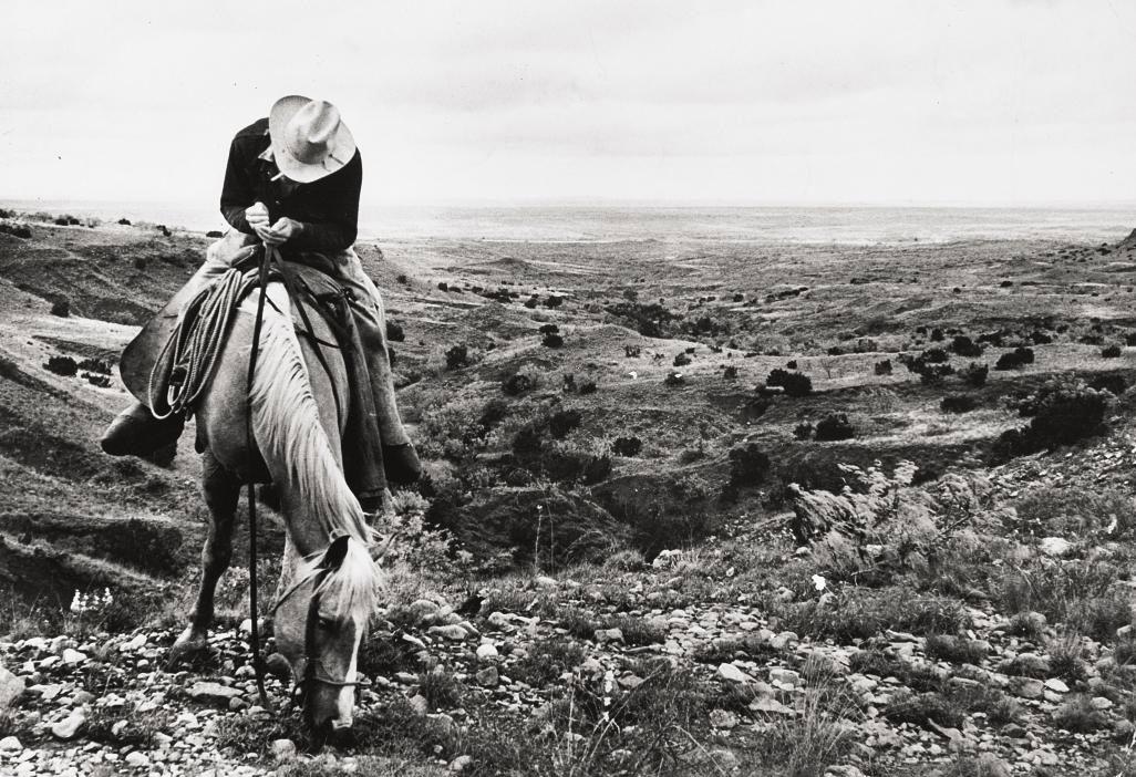 Texas Cowboy, 1949