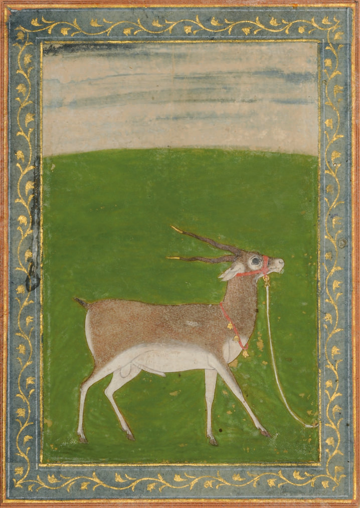 A PAINTING OF A DEER