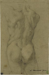 The torso of a male nude, seen from behind
