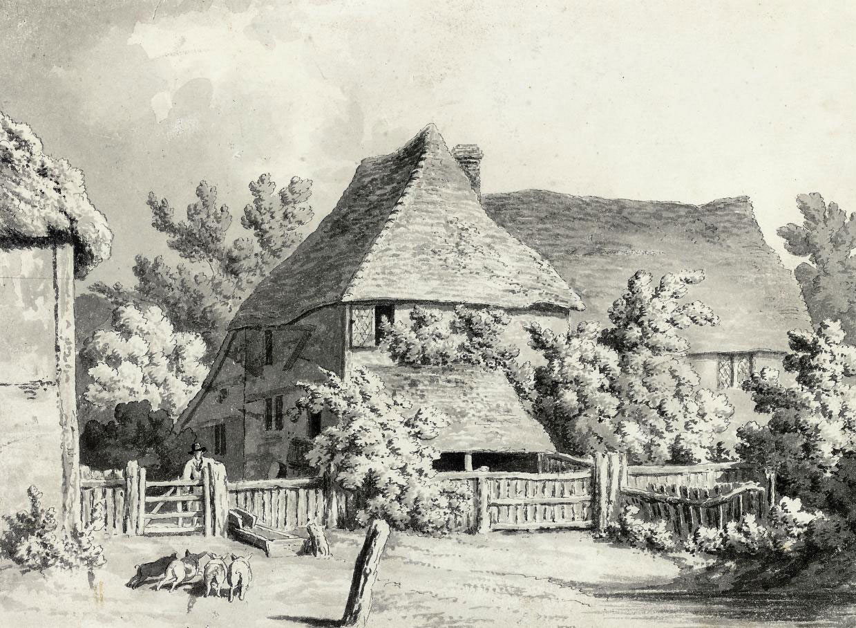 A farmyard scene with four piglets