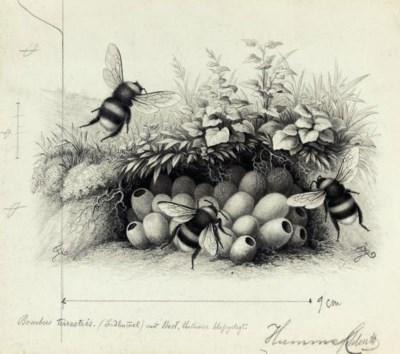 Josef Fleischmann and others,