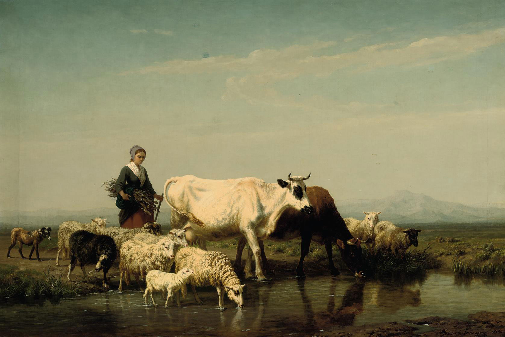 A herder watering her livestock