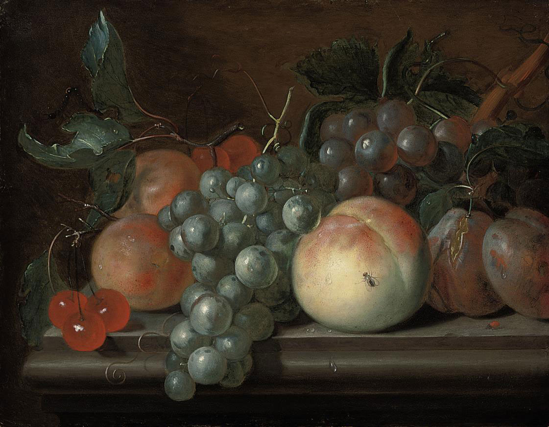 Cherries, grapes, plums, apricots and a peach on a stone ledge