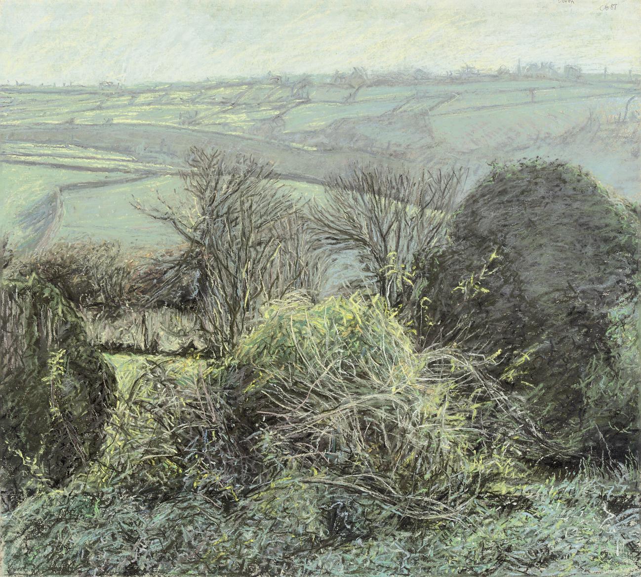 Devon, November Morning in Sunshine