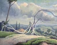 Dead Tree