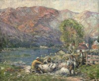 Sheep shearing in the Strath