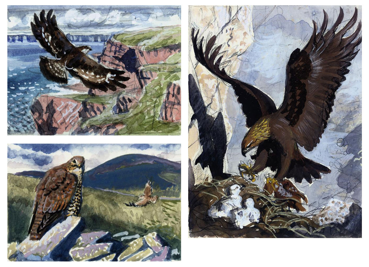 Charles Frederick Tunnicliffe,