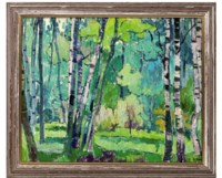 A forest bathed in spring light