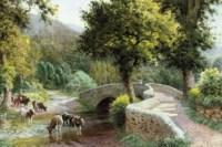 Cows watering by Dunstar Bridge, Somerset