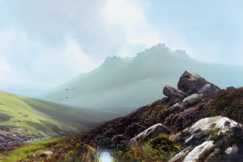 The wildness of the moors (one illustrated)