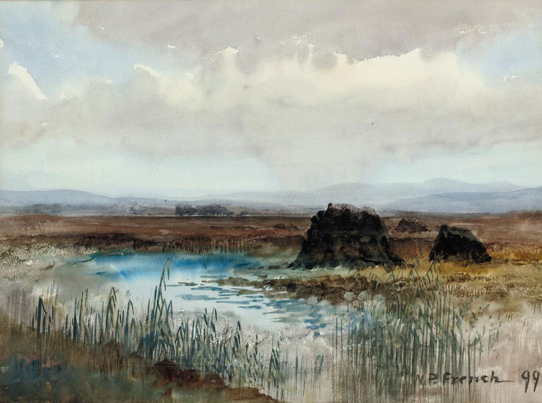 Connemara Bog