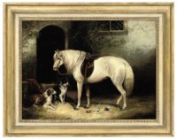 A pony, two spaniels and pigeons outside a stable