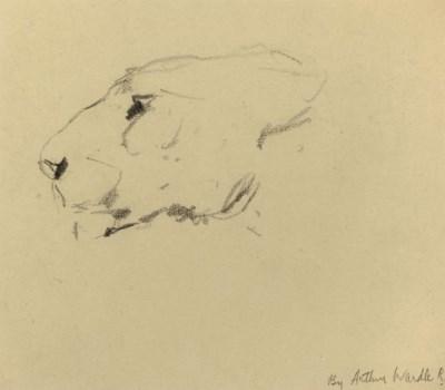 Arthur Wardle (1864-1949)