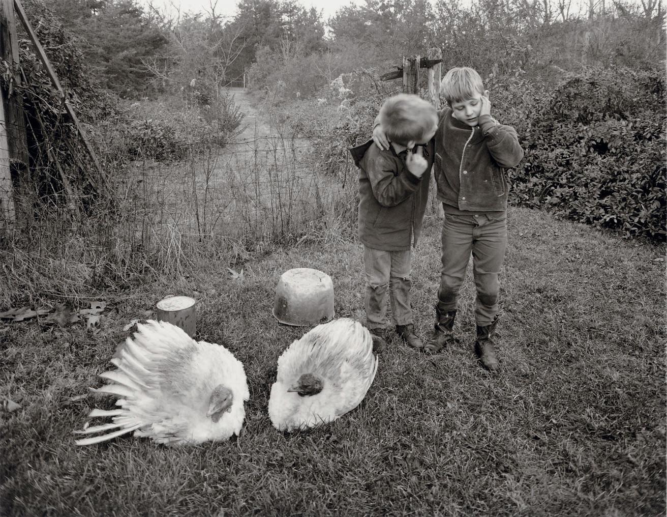 Barry, Dwayne and Turkeys, Danville, VA., 1970