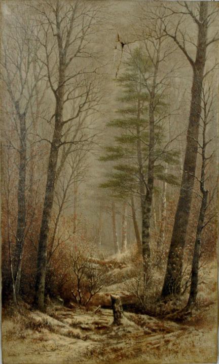 The Woodland Glade