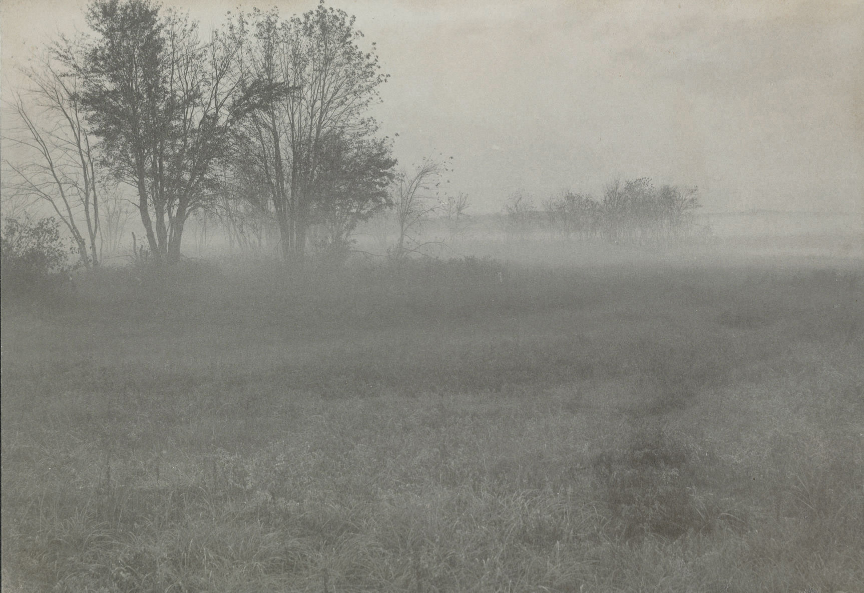 Untitled (Field in fog), c. 1910