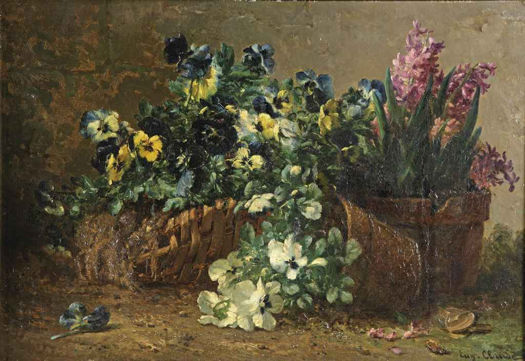 Violets and hyacinths in pots
