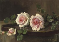 Two pink Prince-de-Bulgarie roses
