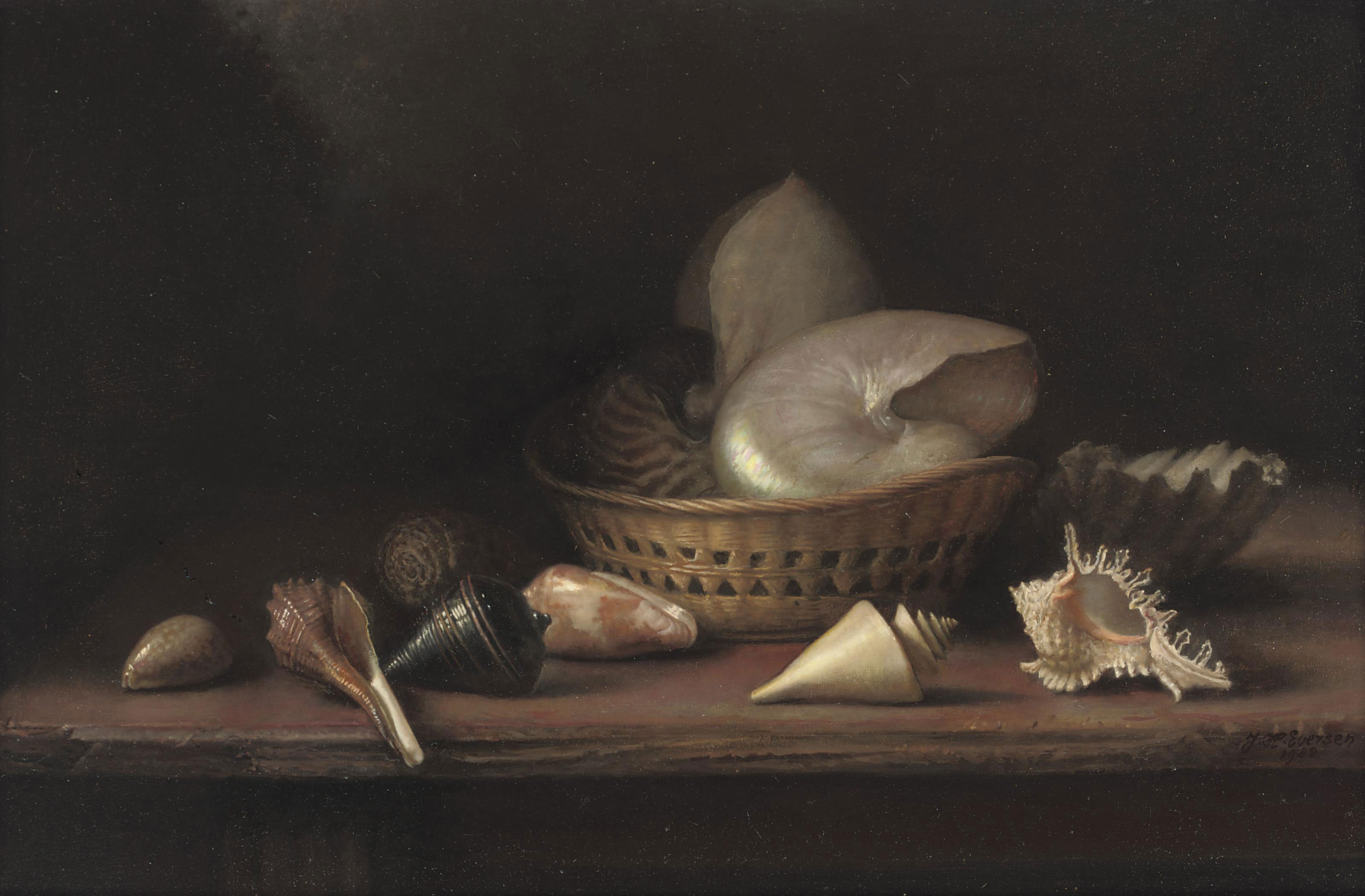A still life with shells