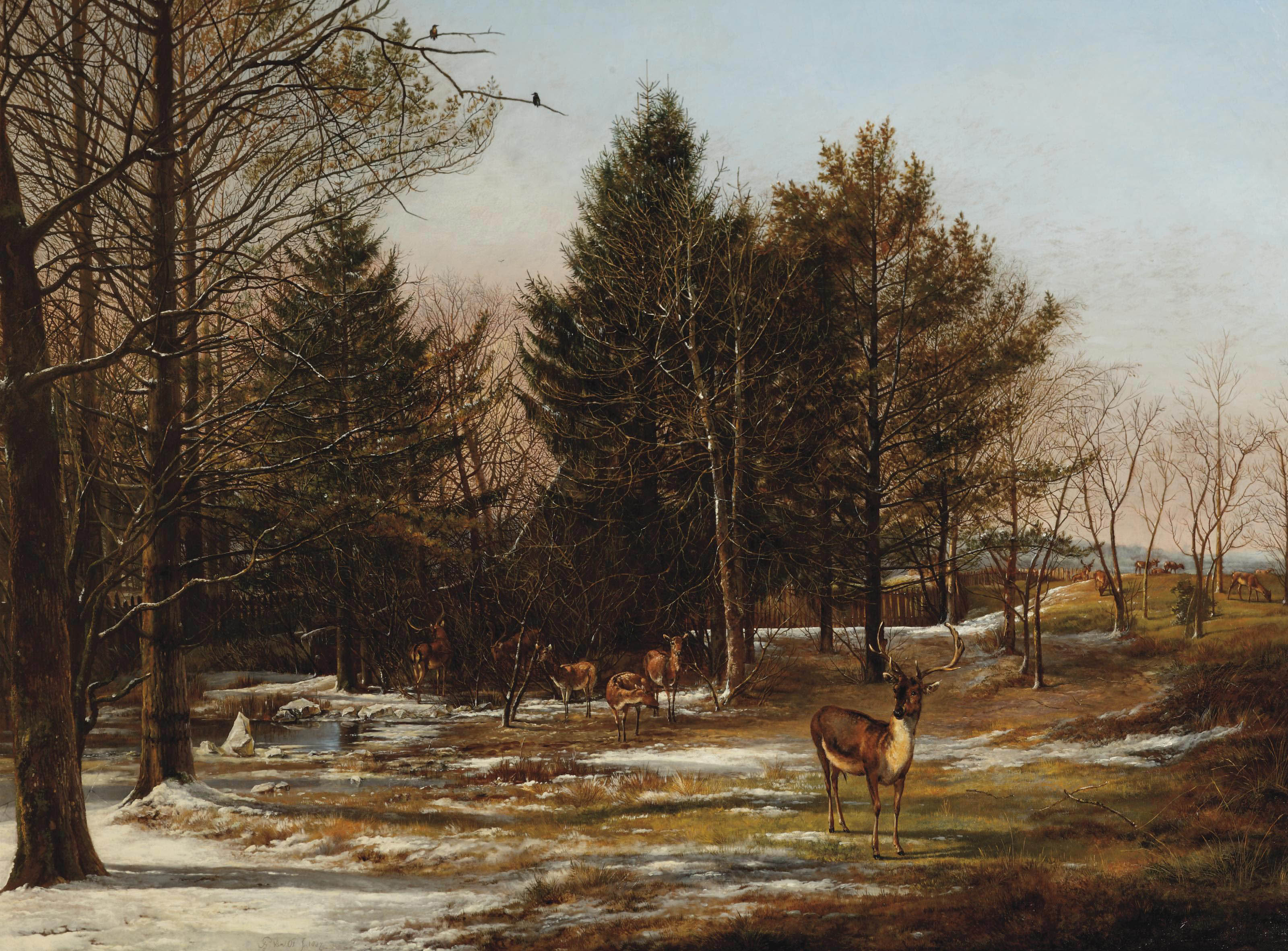 A wooded winter landscape with deers