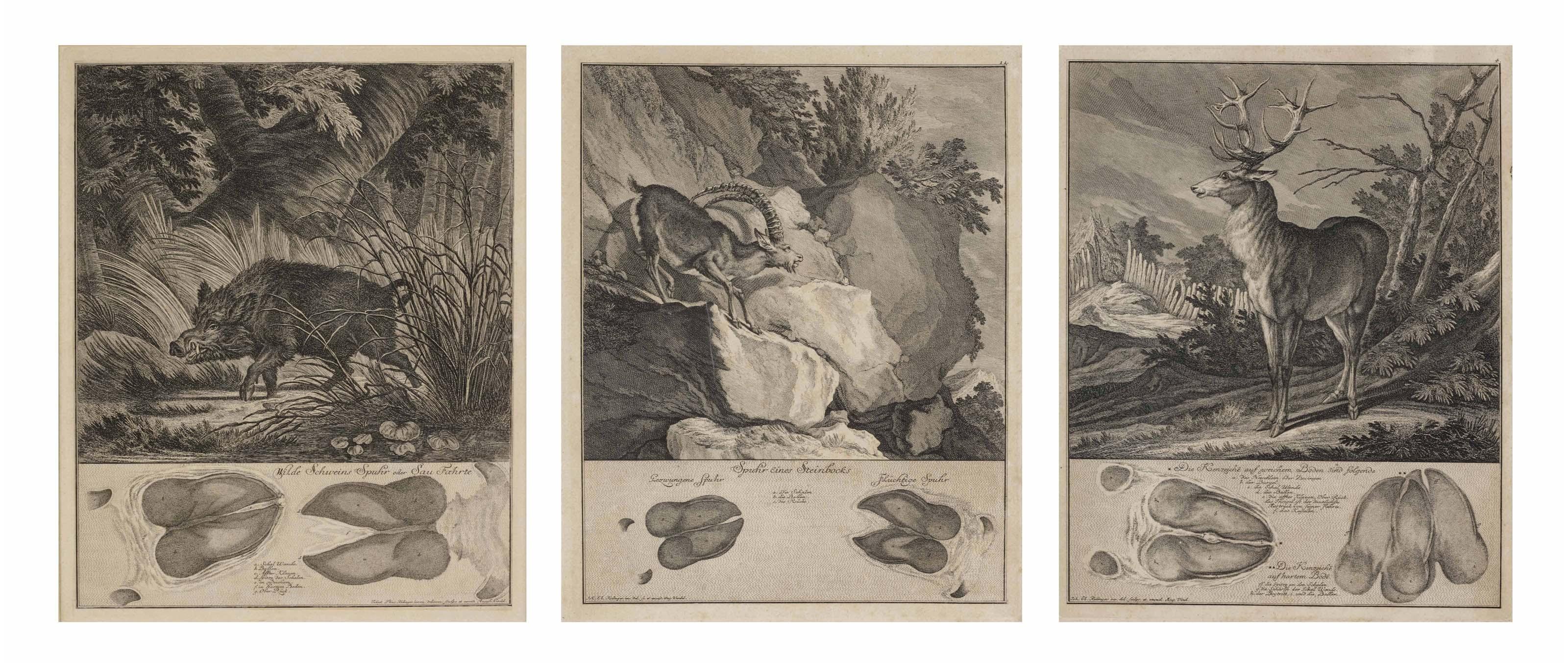 RIDINGER, Johann Elias (1696-1767). A collection of ten prints from Abbildung der jagtbaren Thiere mit derselben angefugten Fahrten und Spuhren