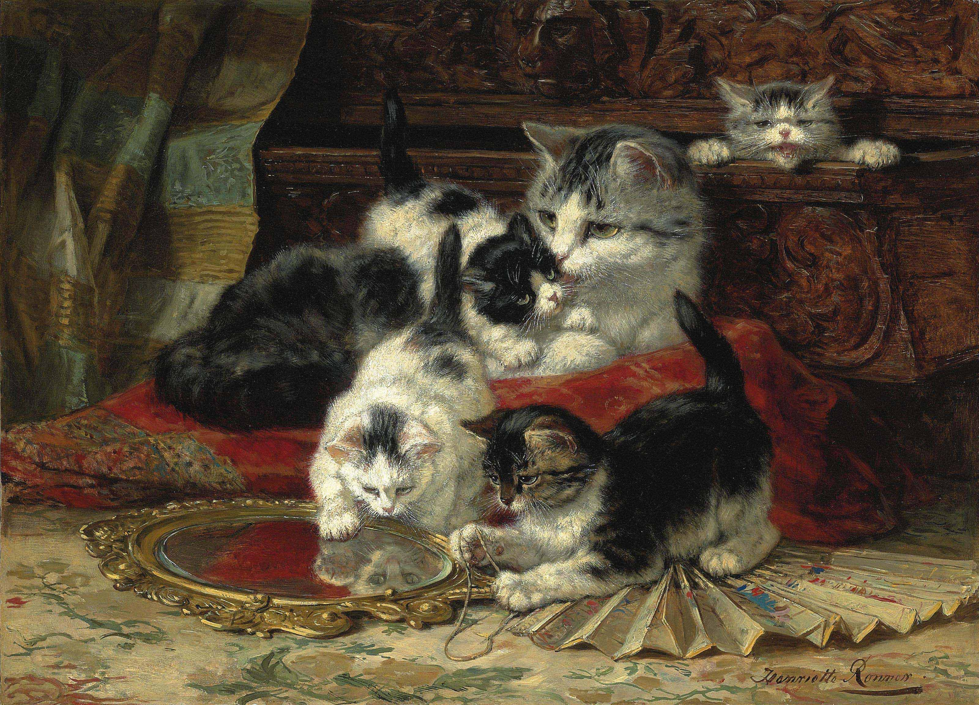 Mother and kittens playing with a hand mirror