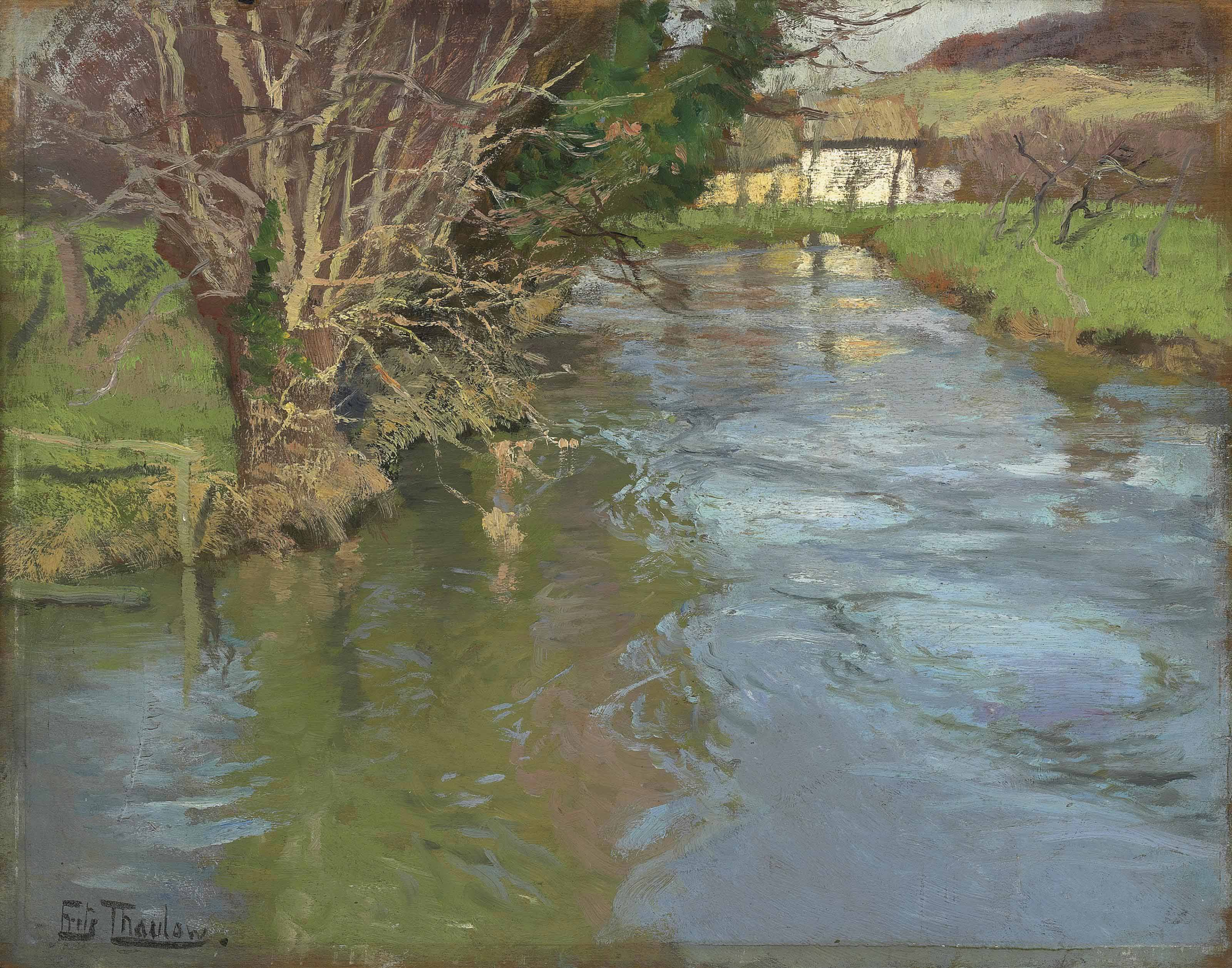 A stream in spring