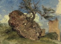 Study of Rock and Tree