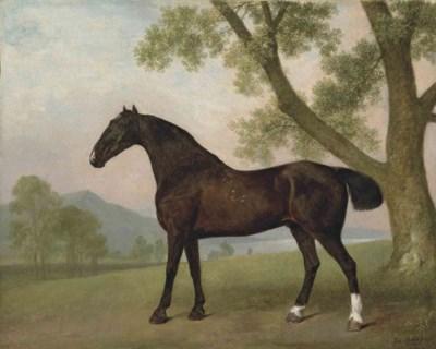 George Stubbs, A.R.A. (Liverpo