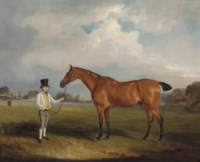 Sir Harry Goodrich's bay hunter Smasher and groom in Ribston Park
