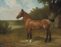 Lord Bingley's hunter in a wooded river landscape