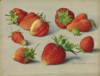 Nine strawberries