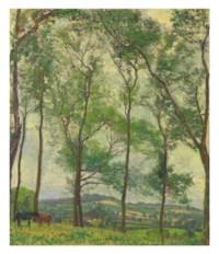 Somerset Landscape, near Applehayes