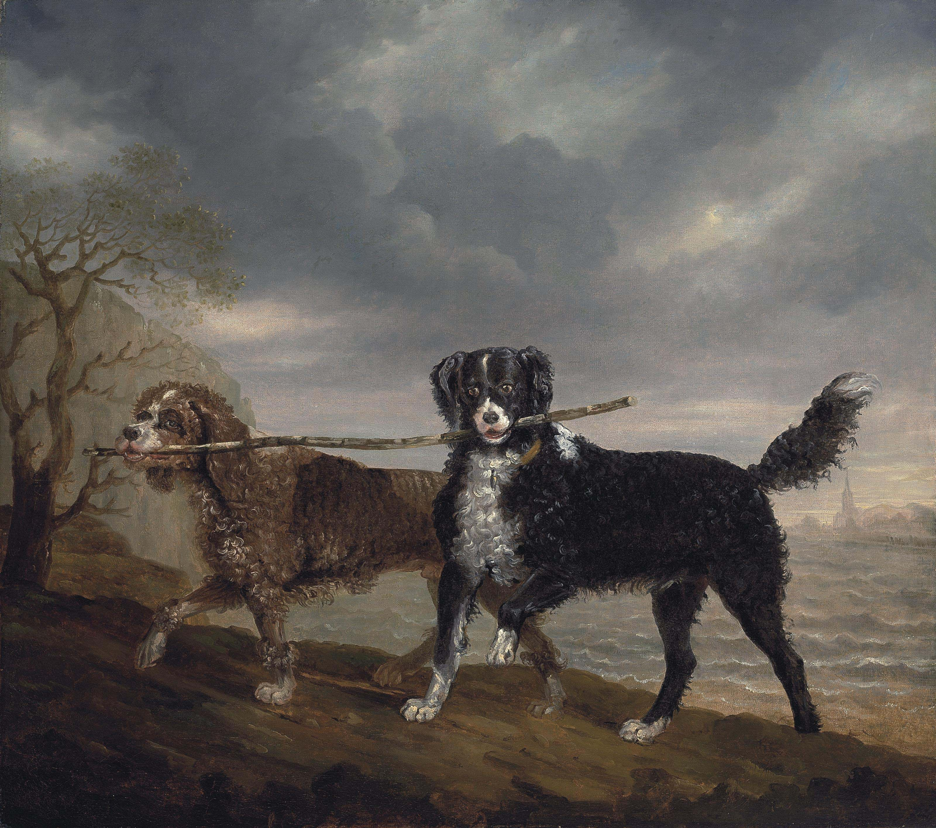 Mrs. Orby Hunter's spaniels, Diver and Shuckleback, by the sea