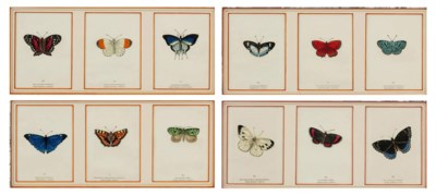 A SET OF TWELVE FRAMED PRINTS