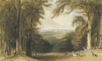 Deer in a glen in Windsor Great Park near Bishopsgate