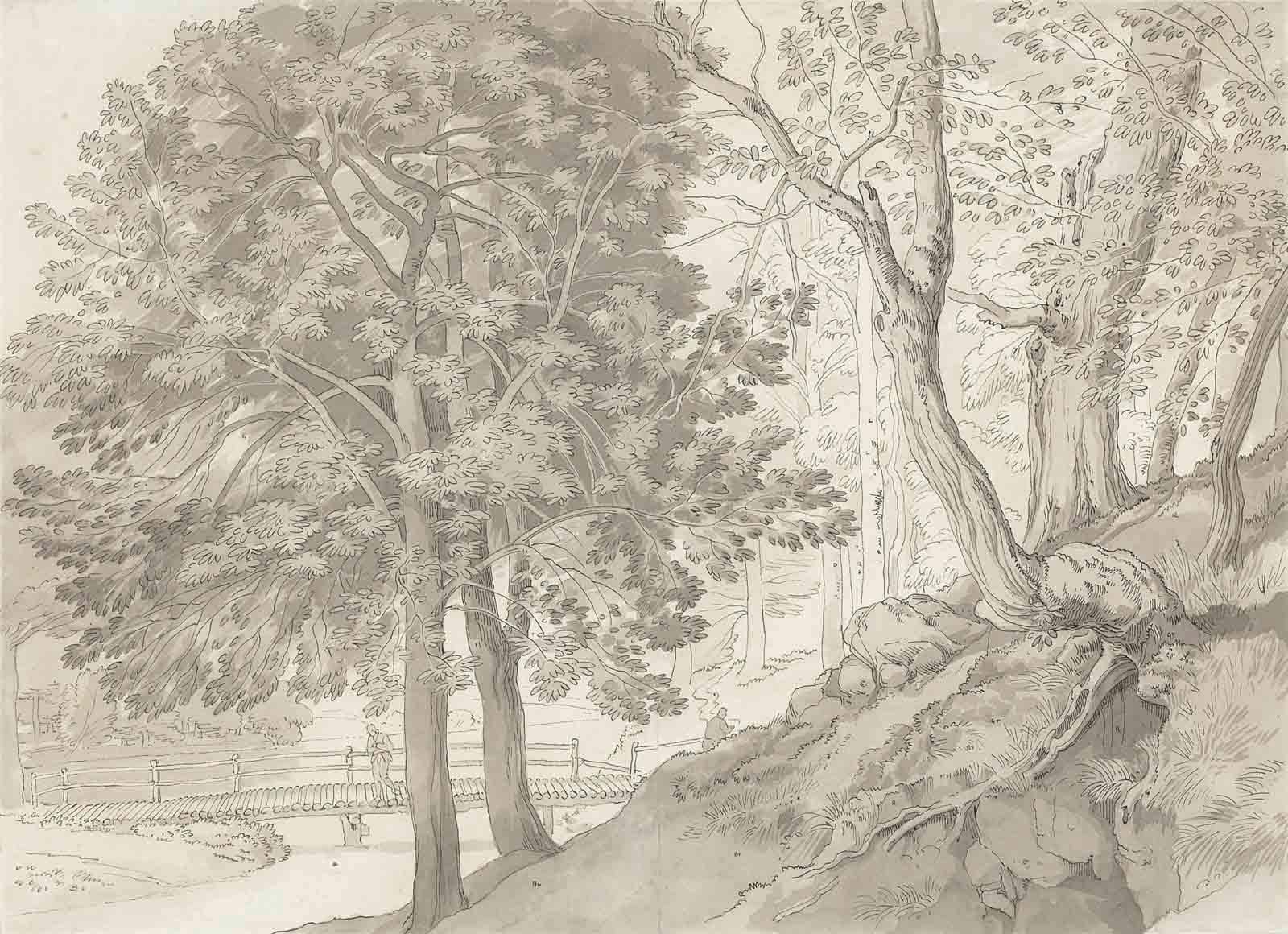 John White Abbott (Exeter 1763