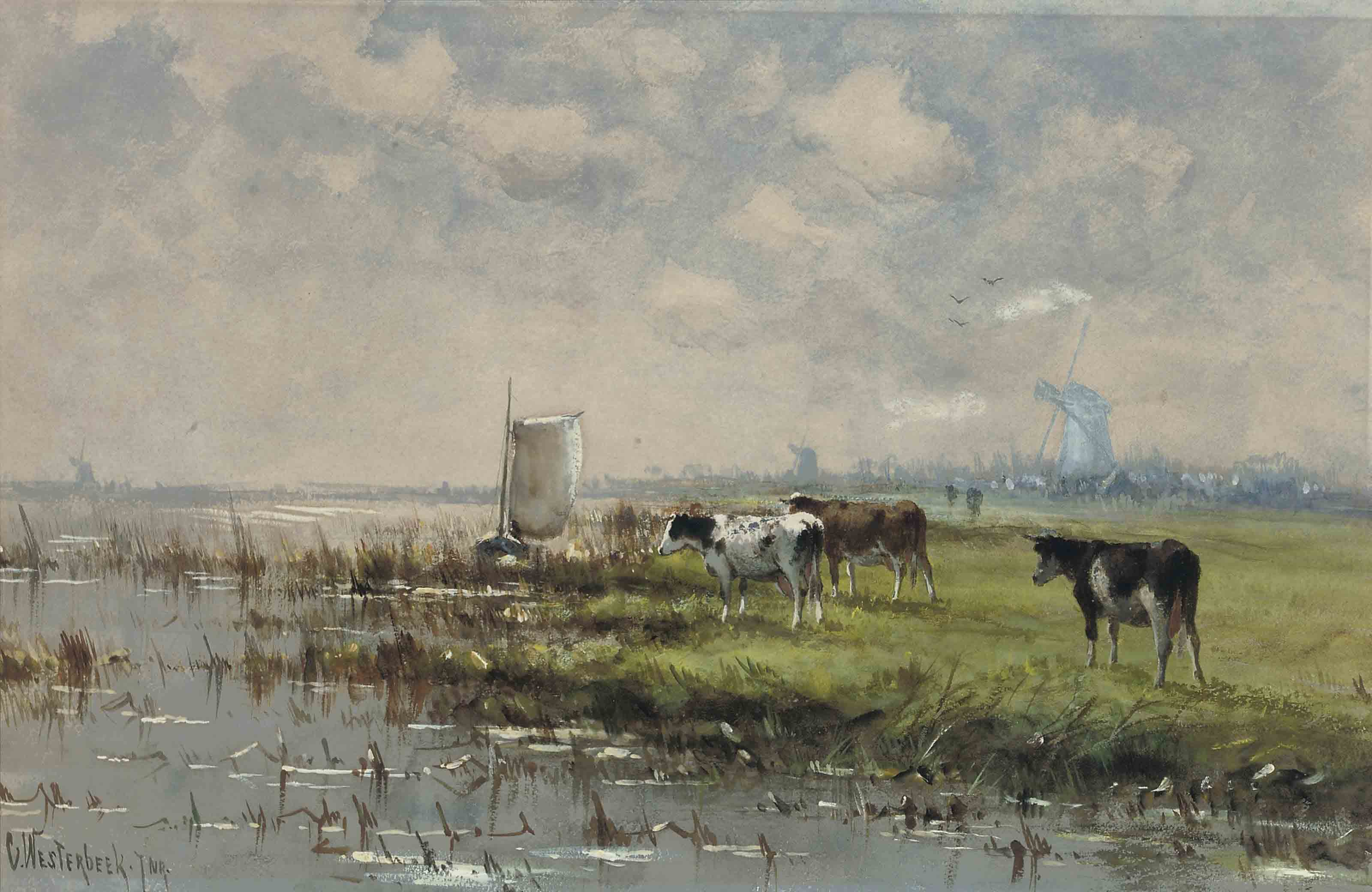 Cattle grazing by the banks of the river on a sunlit afternoon, the Netherlands