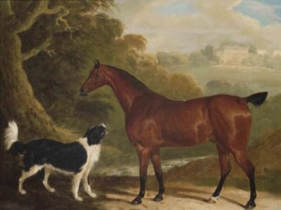 David Dalby (1780-1849)
