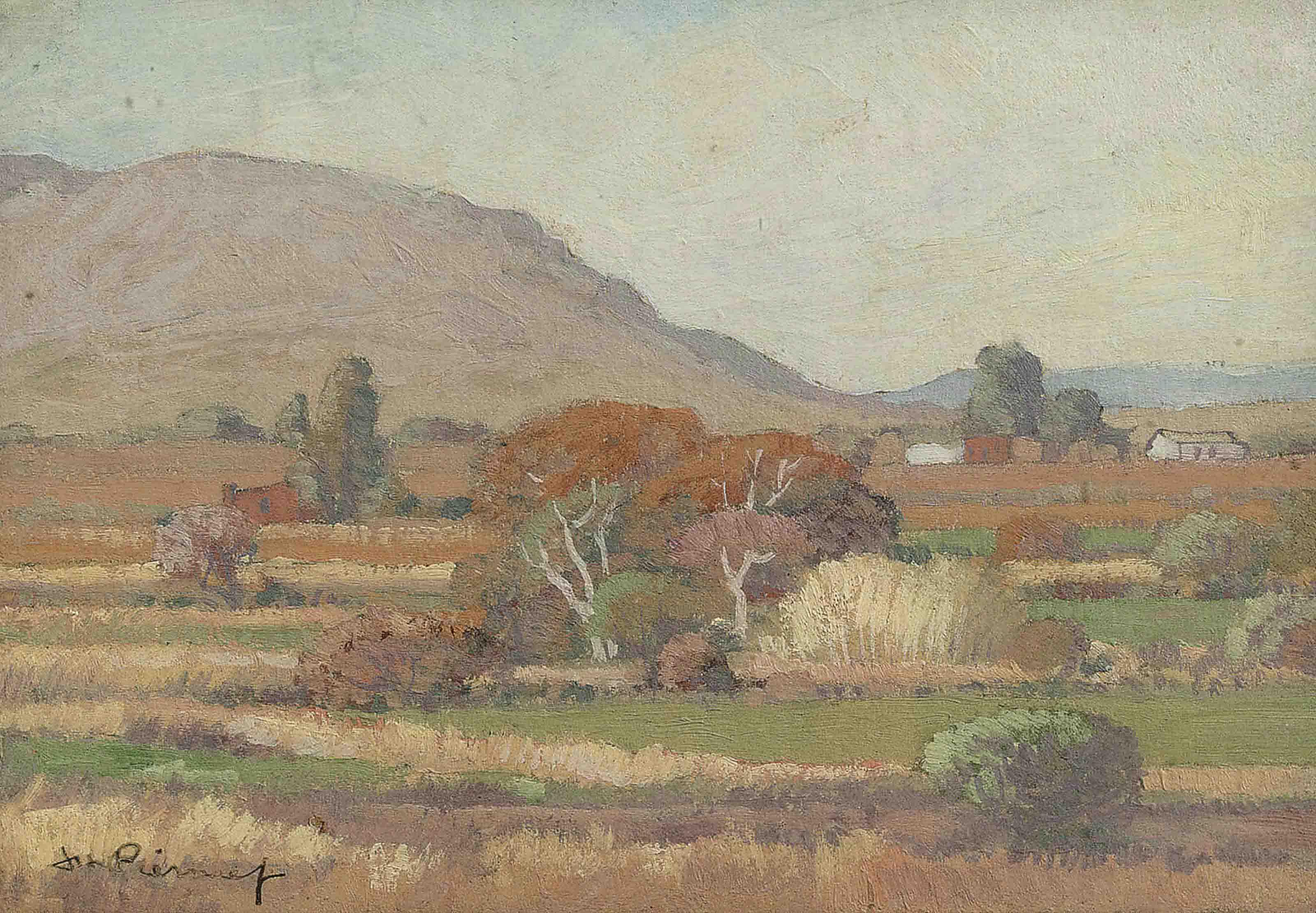 Landscape near Wolmarans Farm, South Africa