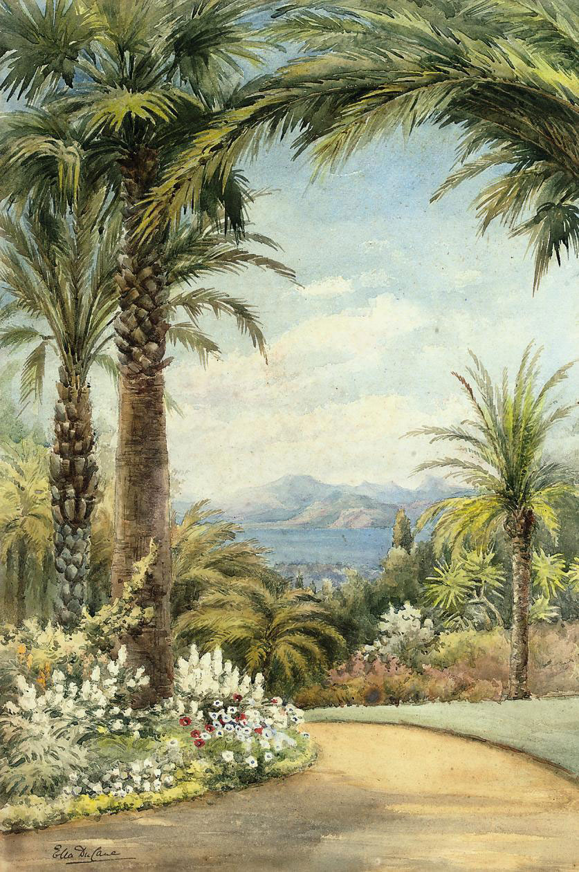 Palms above the Mediterranean coast