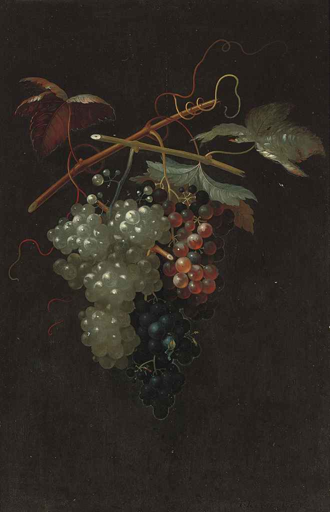 Bunches of white, black and red grapes