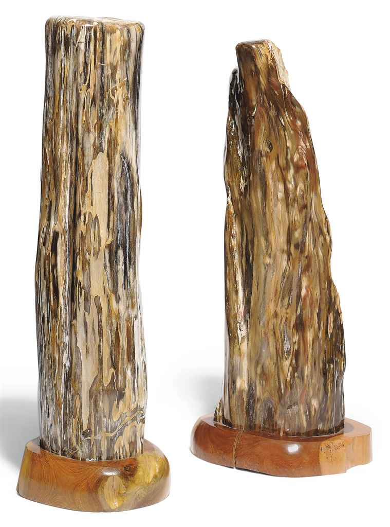 TWO SPECIMENS OF PETRIFIED WOO