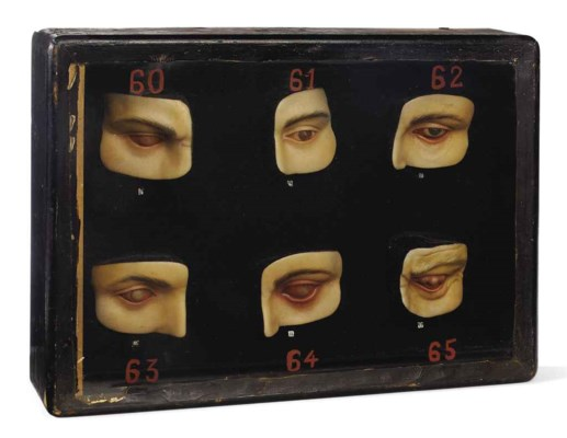 Anatomical models of eye disea