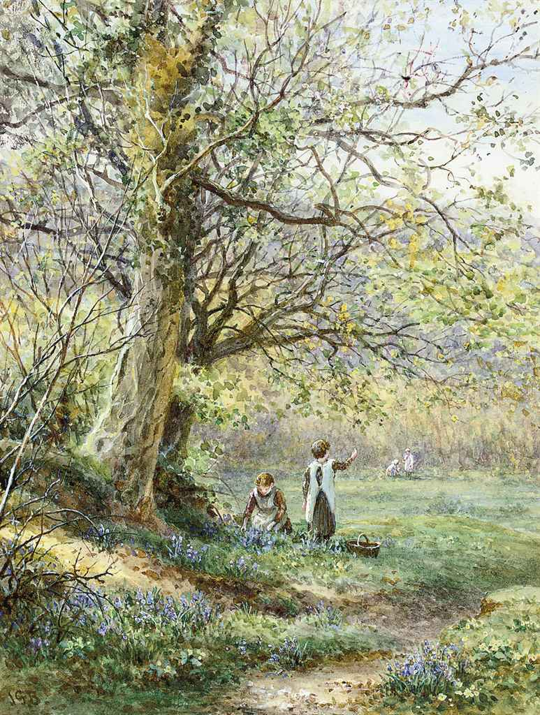 Picking bluebells, Haslemere, Surrey