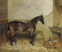 A bay hunter in a stable with a terrier