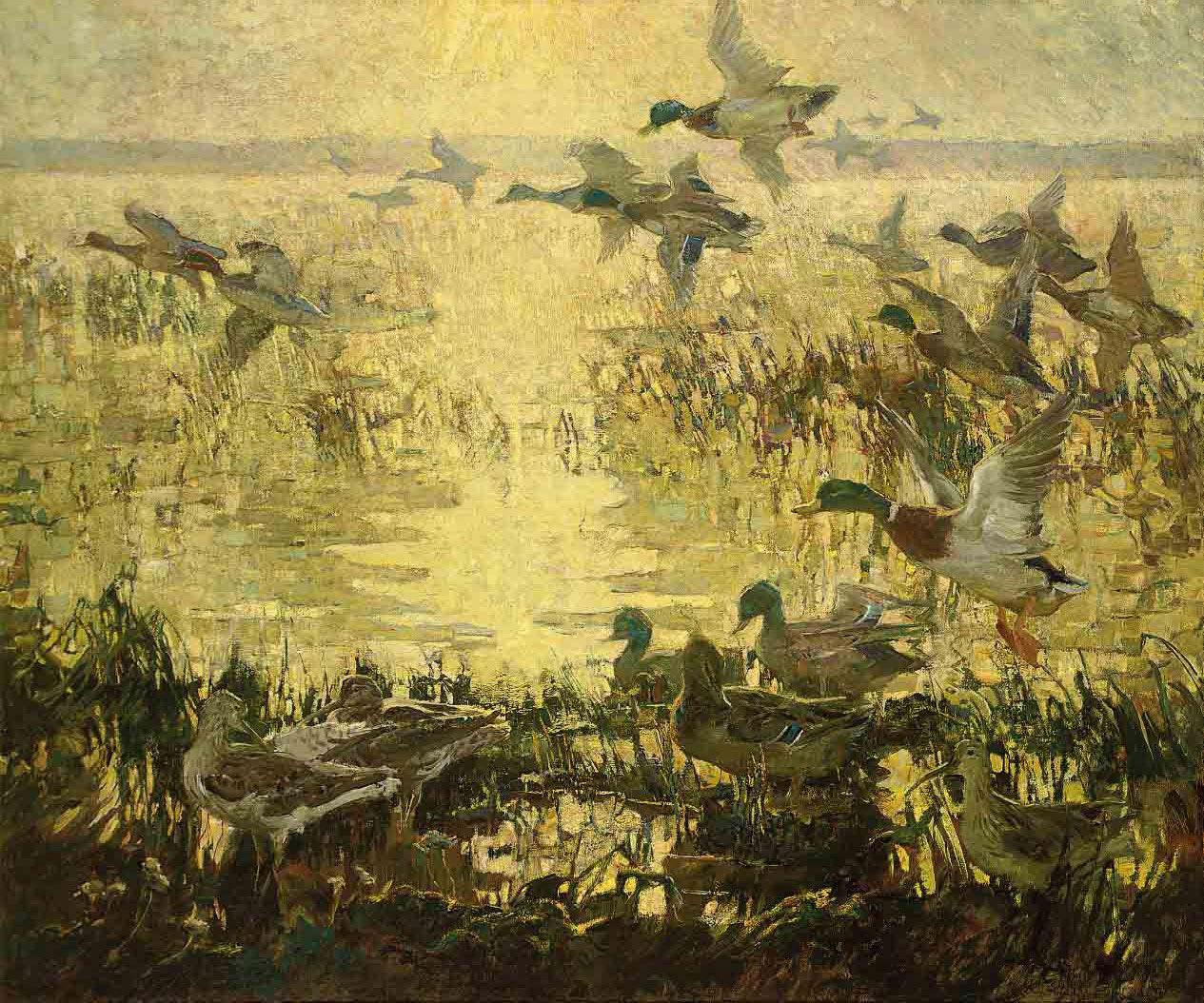 The flight of the wild duck