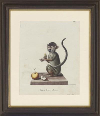 After De Seve c.1780