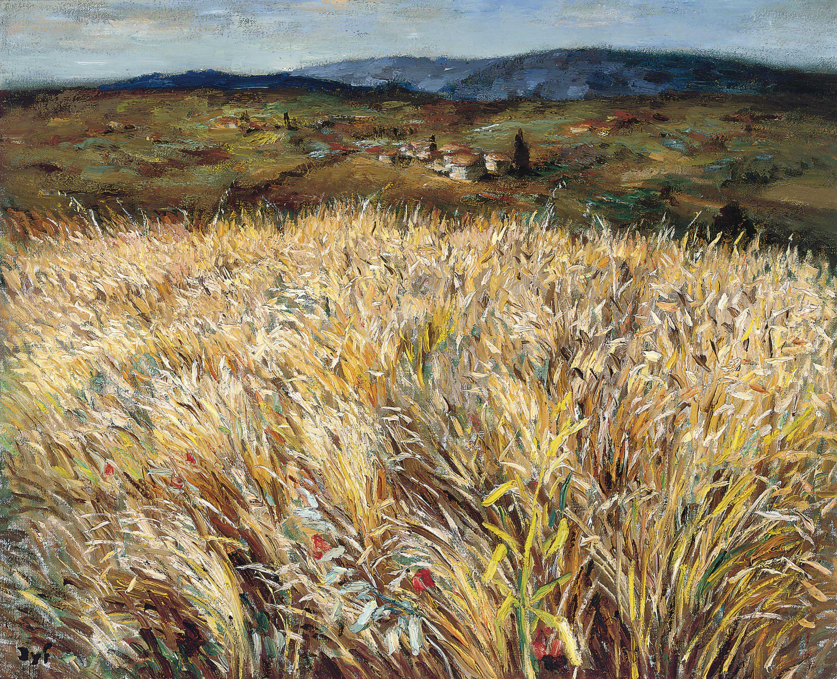 Champ de blé et village en Provence