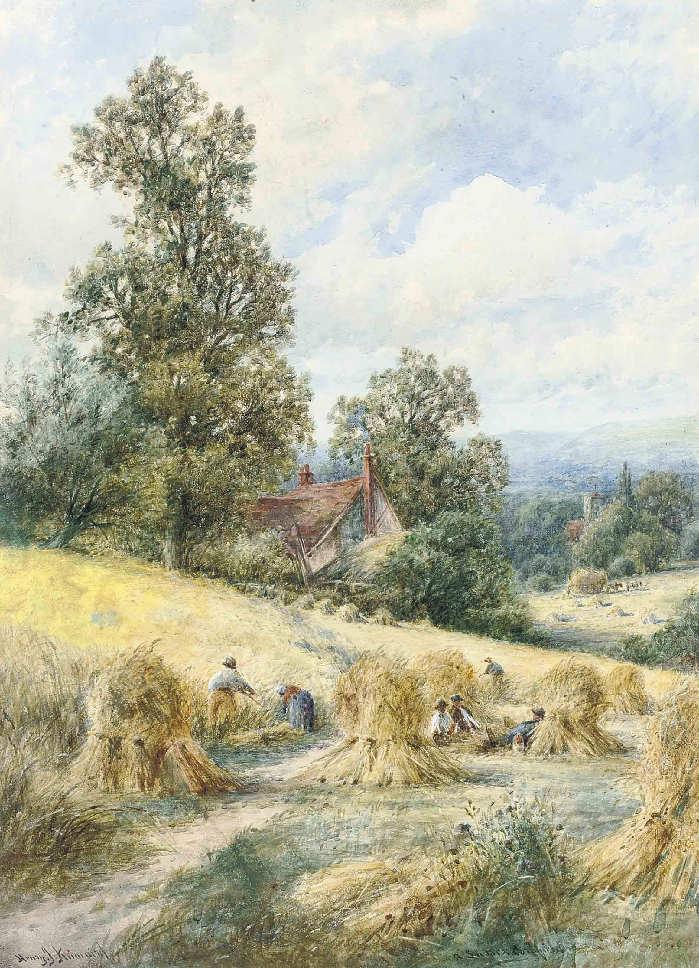 A Sussex cornfield